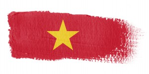 Investigations In Vietnam